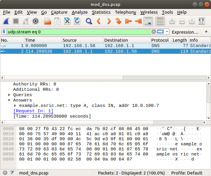 Screenshot of Wireshark showing 2 DNS packets